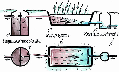 graphic: Constructed wetland with horizontal flow