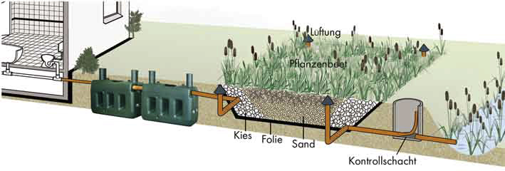 Graphic: Function of constructed wetlands